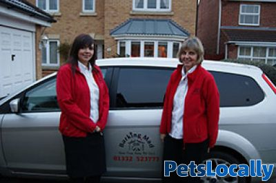 Barking Mad Dog Care Derby