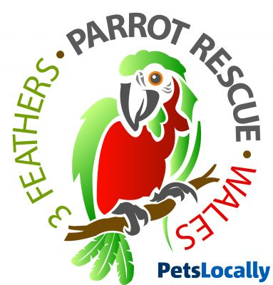 Dog Rescue Centres Mid Wales