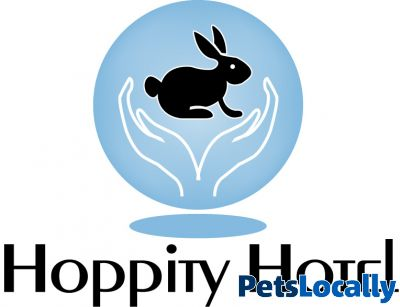 Dog Rescue Centres Herefordshire